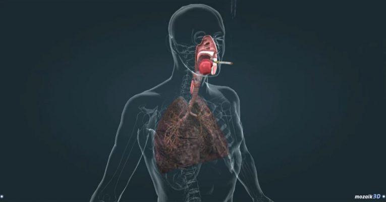 daños del tabaquismo